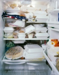 jenbekman_fridge1