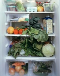 jenbekman_fridge2